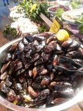 Filled mussel Stock Photos