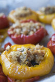 Filled peppers vegetarian Stock Photography