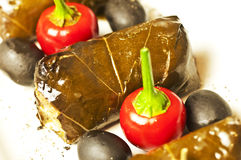 Filled vine leaves Stock Photography