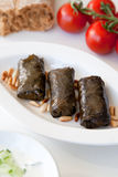Filled vine leaves on a plate Stock Images