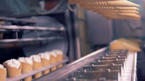 Filled wafer cones are getting lowered onto the conveyor belt. 4K stock video
