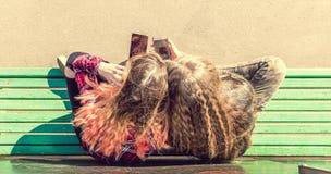 Filles à l'aide des téléphones portables tout en se reposant sur le banc et parler Photos stock