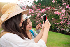 Filles asiatiques de voyage à l'aide du smartphone APP Photos libres de droits