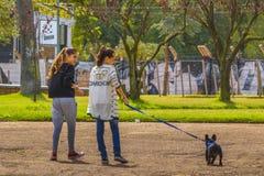 Filles avec l'animal familier marchant au parc Photographie stock libre de droits