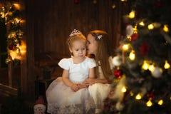 Filles d'amies sous l'arbre de Noël, bokeh Photo stock