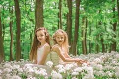 Filles d'amis dans la forêt Photo libre de droits