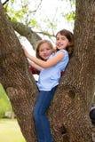 Filles d'enfants jouant s'élever à un parc d'arbre Photo libre de droits