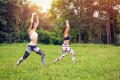 Filles dans la nature faisant l'exercice de yoga pour la forme physique photos stock