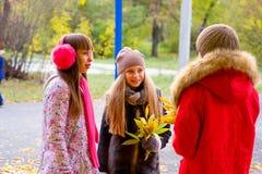 Filles de la préadolescence se parlant en parc Photographie stock