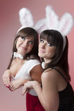 Filles de lapin Photo stock