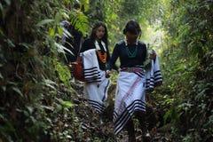 Filles de Mao de festival de Chithuni avec leurs châles tribals Photo libre de droits