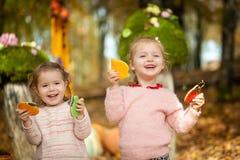 Filles de sourire en parc d'automne Photographie stock