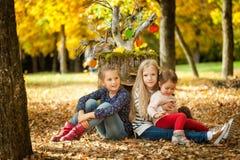 Filles de sourire en parc d'automne Photo stock