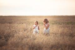 Filles drôles jouant avec du seigle au coucher du soleil, mode de vie Photo stock