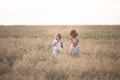 Filles drôles jouant avec du seigle au coucher du soleil, mode de vie Photographie stock libre de droits