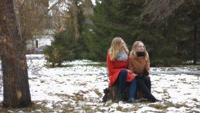 Filles en parc neigeux clips vidéos
