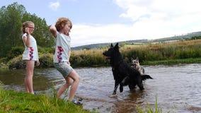 Filles jouant avec des chiens par la rivière Photographie stock libre de droits