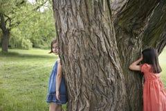 Filles jouant le cache-cache par l'arbre Images stock