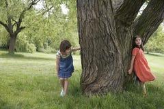 Filles jouant le cache-cache par l'arbre Images libres de droits