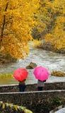 Filles, parapluies colorés en parc d'automne Image stock