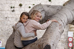 Filles s'asseyant dans un arbre Photos stock