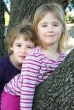 Filles s'asseyant dans un arbre Photographie stock libre de droits