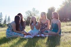 Filles s'asseyant ensemble dans le domaine herbeux avec la lumière du soleil au-dessus Photographie stock libre de droits