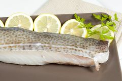 Fillet of cod Stock Photography