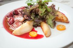 Duck breast with cherry sauce . Royalty Free Stock Images
