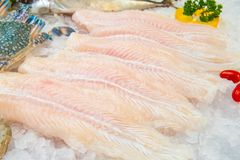 Fillet of Fish Pangasius on ice royalty free stock photo