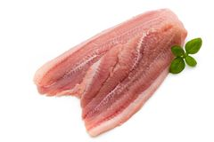 Fillet of Fish Pangasius. Isolated on white background. Stock Image