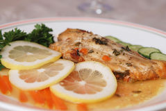 Fillet of fish and side salad Royalty Free Stock Photos