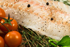 Fillet of fresh raw fish with herbs Stock Images