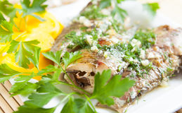 Fillet grilled fish and greens on white dish Stock Image