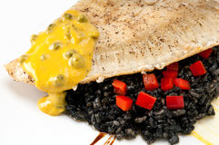 Fillet of Halibut Royalty Free Stock Photos