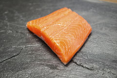 Fillet of Rainbow Trout Royalty Free Stock Photo