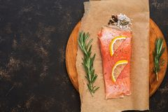 Fillet of raw salmon fish with herbs and spices on a cutting board. Top view, copy space. Fillet of raw salmon fish with herbs and spices on a cutting board Royalty Free Stock Images