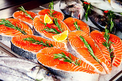 Fillet of red fish Stock Photos