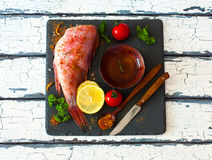 Fillet of red grouper and spices Stock Image