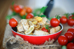 Fillet roasted turkey slices with vegetables Royalty Free Stock Photography