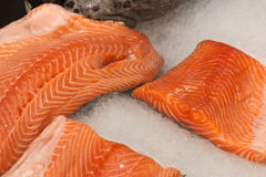 The fillet of a salmon lying in ice. On a counter of shop Royalty Free Stock Photo