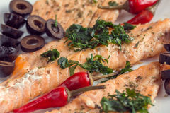 Fillet of salmon with olives, herbs and spicy red pepper Royalty Free Stock Image