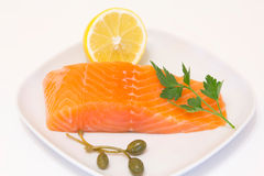 Fillet of a salmon Royalty Free Stock Photos