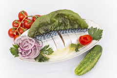 Fillet, salted mackerel Royalty Free Stock Images