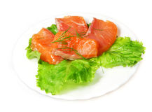 Fillet of  salty salmon   with greens Royalty Free Stock Photo