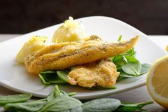 Fillet of sea bream with mashed potatoes Stock Photography
