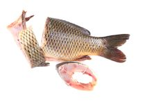Fillet and tail of fresh raw fish carp. Stock Photos