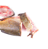Fillet and tail of fresh raw fish carp. On a white background Royalty Free Stock Photos