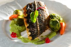 Fillet of trout with vegetables and cabbage stock photo