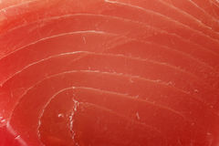 Fillet of Tuna Fish Stock Image